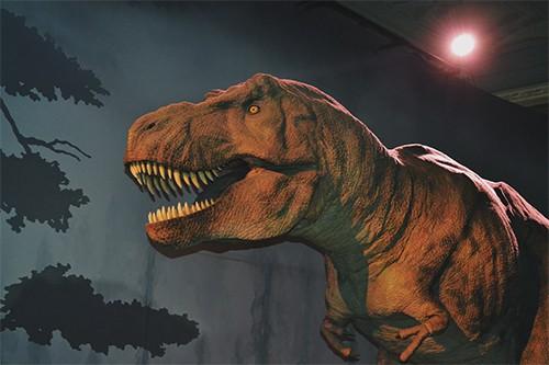Por que se extinguieron los dinosaurios